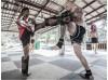 5 дней тренировок бокса и Муай Тай | Monsoon Gym - остров Тау, Таиланд