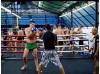 6 месяцев MMA, Krav Maga и Muay Thai | Pattaya Kombat Group - Паттайя, Таиланд