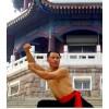 Месяц частных занятий Kung Fu | Ren Shi Martial Arts School - Шаньдун, Китай