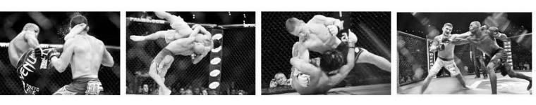 Смешанные единоборства (MMA)